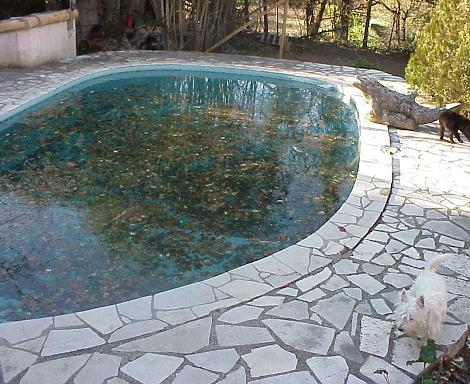 Docteur jardin gardening and maintenance for Piscine orsole